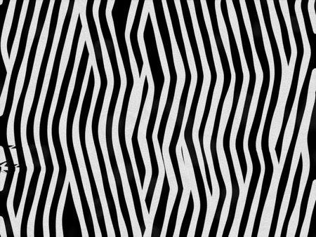 pelage: Animal fur texture - zebra waved
