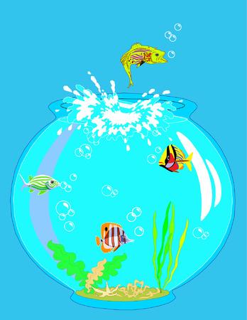 Jumping fish from the aquarium Stock Vector - 2074811