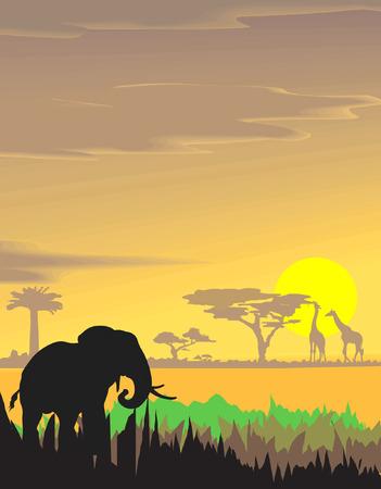 Vector evening landscape illustration with wild animals Illustration