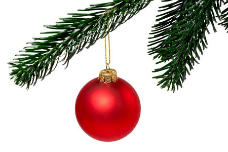 red christmas ball on a green branch isolated on white background
