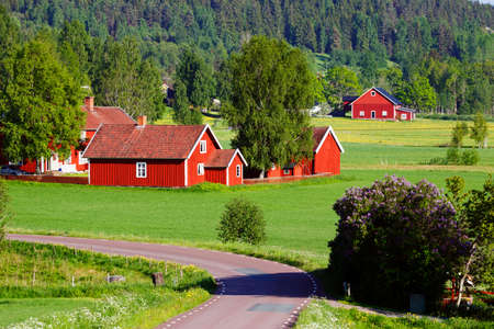 old red farm houses in a rural landscape, Sweden
