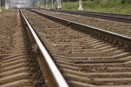 transpozycji: kolejowe w lesie