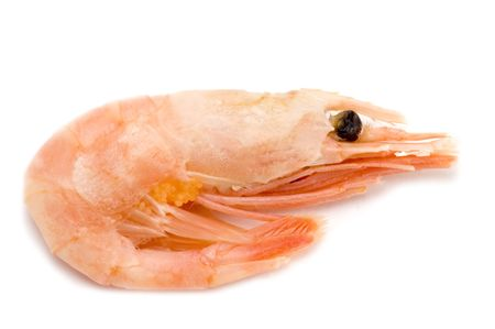 object on white - seafood - shrimp Stock Photo - 2222464