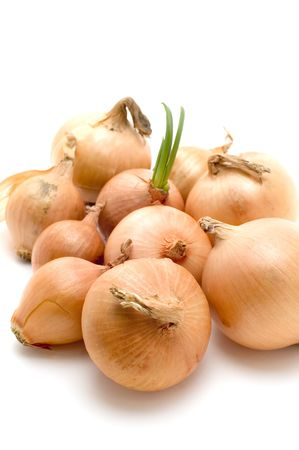 object on white food - bulb onion