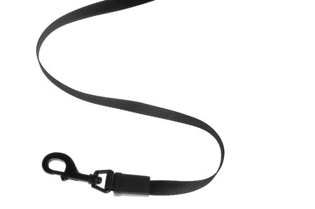 dog on leash: objeto en blanco herramienta perro de plomo