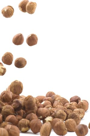 hazel nut: object on white - food hazel nut