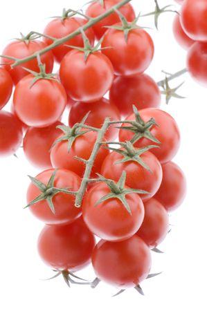 object on white - food tomato macro photo