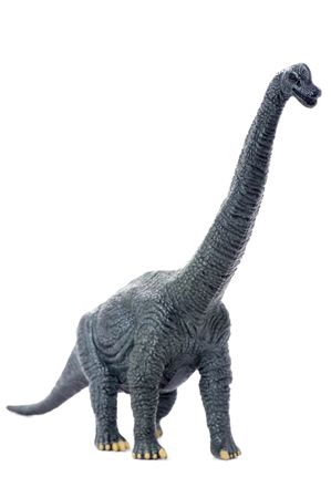 long tail: object on white - toy dinosaur close up Stock Photo