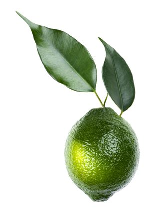 object on white - food lime close up Stock Photo - 7435073