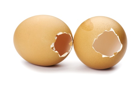 object on white - Open egg close up photo