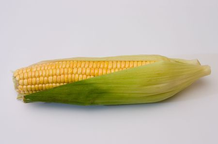 Corn ear on a white background