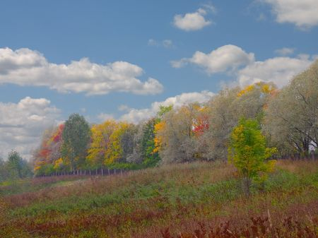 Colourful autumn landscape under cloudy sky Stock Photo - 656067