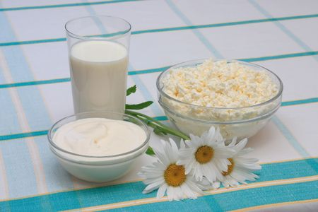 Milk, sour cream and cottage cheese in glass on check tablecloth, with three daisies