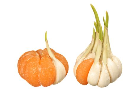 clove of clove: Mandarin with one garlic clove and garlic with one mandarin segment: concept of similarity and dissimilarity Stock Photo