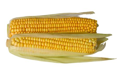 Two corn ears on white background, isolated Stock Photo