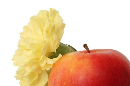 Cropped close-up of yellow carnation flower and red apple, isolated on white background Stock Photo - 947044