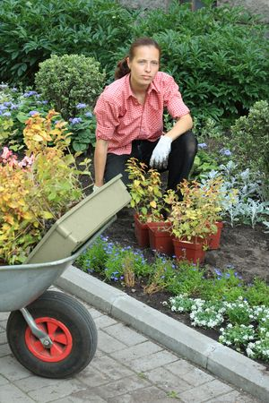 Young woman planting flowers in a garden, with a fragment of wheelbarrow on a foreground Stock Photo