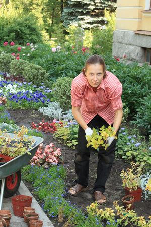 Young woman planting out fuchsia sprouts in a garden