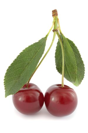 Couple of ripe sour cherries with leaves, isolated on white