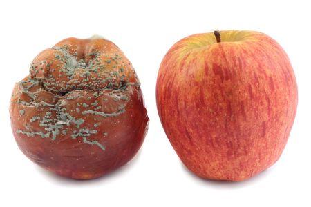 esporas: Dulce de manzana roja y manzana podrida, aislados en fondo blanco