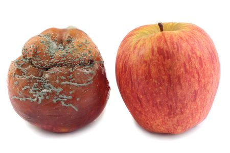 abominable: Fresh red apple and rotten apple, isolated on white background