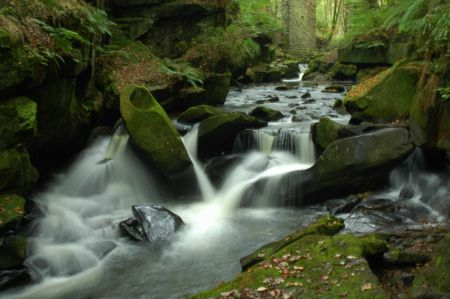 Healy Dell, fairies chapel, waterfall photo