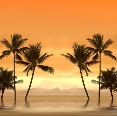 Tropical sunset photo