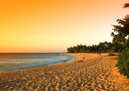 waikiki beach: Hawaii - Oahu