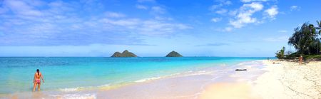 oahu: Tropical beach Stock Photo