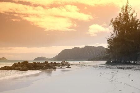 Hawaiian beach photo