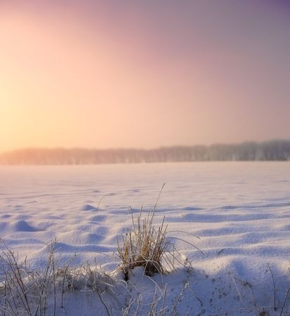 winterday: Photo of warm sunset on a cold winterday