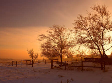 Photo of warm sunset on a cold winterday photo