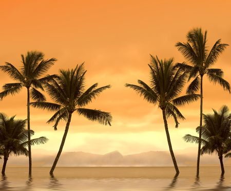 Image of a , warm tropical sunset Stock Photo - 750676
