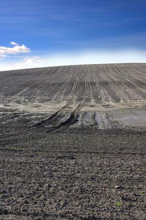 Dirt field Stock Photo - 787644
