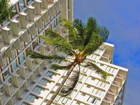 editorial: Editorial: Street life in Honolulu
