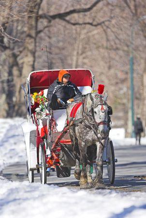 winterday: Editorial: Life sunny winterday in Central Park, Manhattan, New York