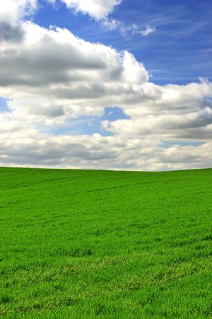 Photo of green field with blue, cloudy sky  photo
