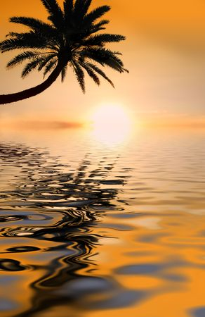 Photo of icon tropical sunset with palms photo