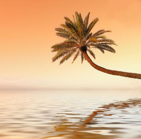 Icon photo of romantic, tropical beach at sunset Stock Photo - 966804