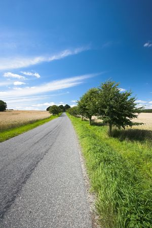 A photo of a country road in summertime (Denmark) Stock Photo - 1356238