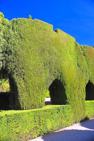 hedged: A photo of a beautiful park (Granada, Spain)