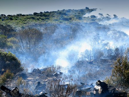 bush fire: A huge wildfire in South Africa