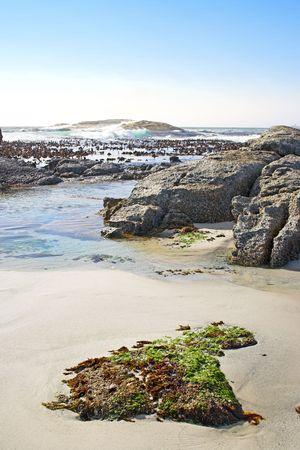 A photo of beautiful coastal wilderness Stock Photo - 2795887
