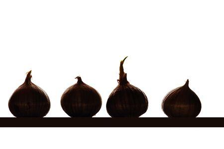 A semi isolated photo of white garlic onions photo
