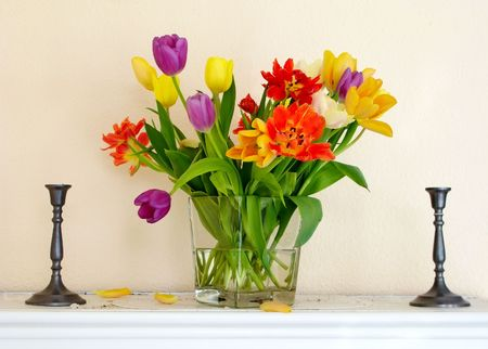A photo of very colorful tulips Stock Photo - 2795744