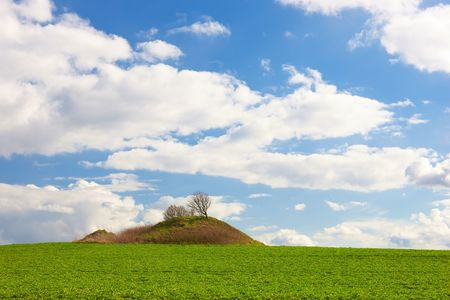 Green field and trees with blue sky and clouds  in early spring Stock Photo - 2854003