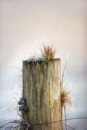 A photo of an old  fence  post in wintertime photo