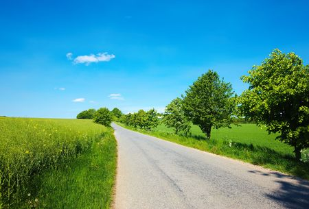 pano: Country road in Denmark (in summertime)