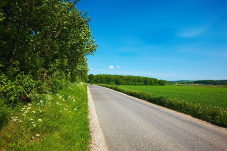 A Danish country road - a warm, early summer day Stock Photo - 4067668