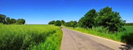 A road in the countryside a summer day (Denmark) photo